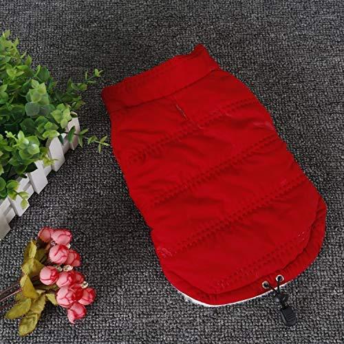 Red XL Red XL Dvfgsxxht Dog Clothing Pet Supplies Misc Dog clothes autumn and winter fashion plus velvet warm jacket puppy pet puppies lapel clothes (color   Red, Size   XL) Pet Dog Dress (color   Red, Size   XL)