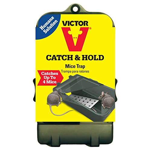 Victor Multiple Catch Humane Live Mouse Trap M333 - Catch up to 4 - Victor Ny In Stores