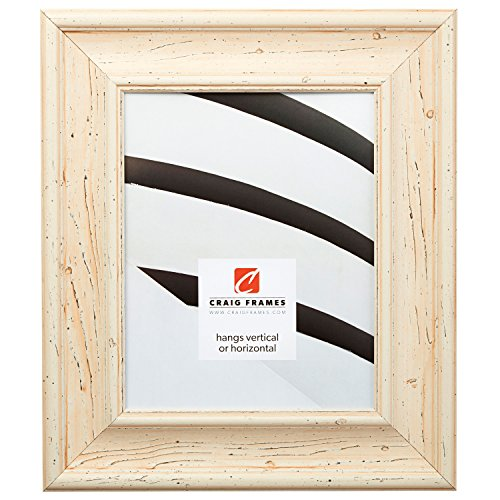 Craig Frames 80614101 22 by 28-Inch Picture Frame, Solid Wood, 2.5-Inch Wide, Light - X 22 28 Light