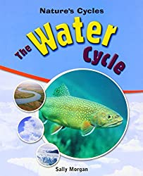 The Water Cycle (Nature's Cycles)