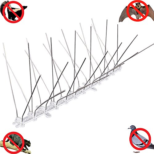 Stainless Bird Spikes,7'' Width, 5 Rows UV Treatment PC Base With SUS304 Haierc 7'' UV Treatment PC Base With SUS304 Anti Pigeon Pest Control Bat control, cat control by Haierc