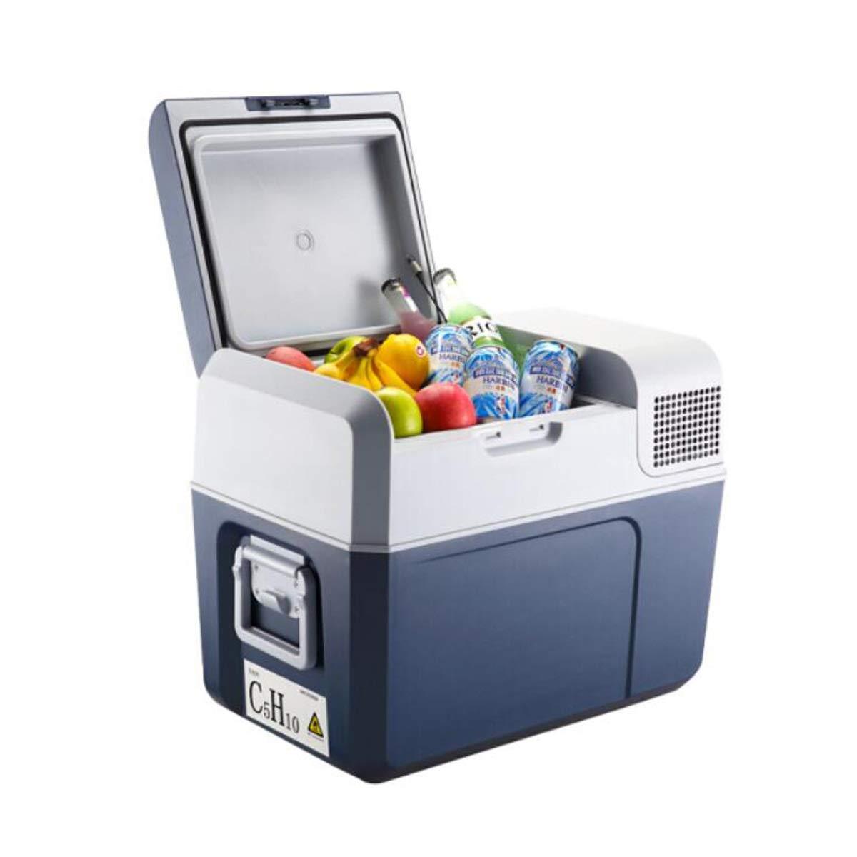 Qiyuezhuangshi01 Refrigerador for Autos, Congelador pequeño for ...