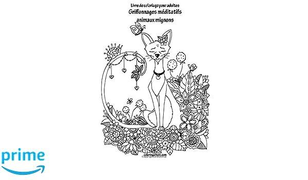 Amazoncom Livre De Coloriage Pour Adultes Griffonnages Méditatifs