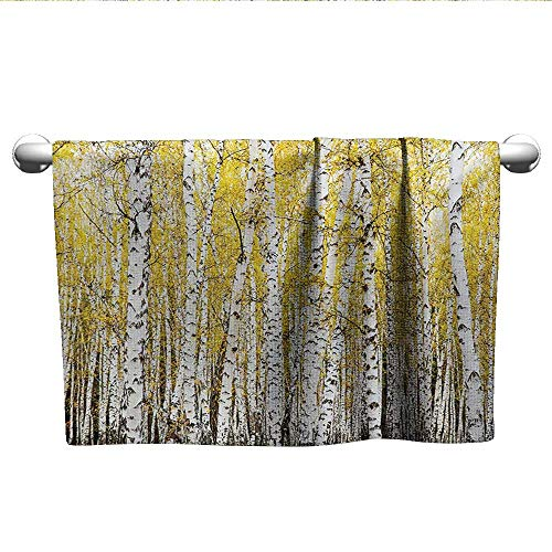 alisoso Forest,Small Bath Towels Autumn Birch Forest Golden Yellow Leaves Woodland October Seasonal Nature Picture Sports Ttowel Yellow Grey W 35