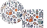 Bundle of Fun Adorable Woodland Animals Party Supply Kit - Plates and Napkins
