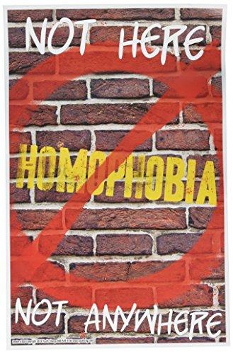 Youth cambiar Stop homophobia construye seguridad, tolerancia, aceptación de diversidad Póster de carteles (# 528)