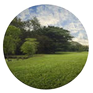 alfombrilla de ratón Campo de hierba verde en el parque de la ciudad, por la tarde - ronda - 20cm