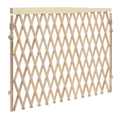 Folding Pet Gate - Evenflo Expansion Walk Thru Room Divider Gate