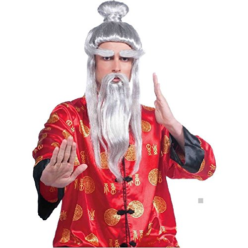 Martial Arts Master Wig Costume Accessory Adult Halloween