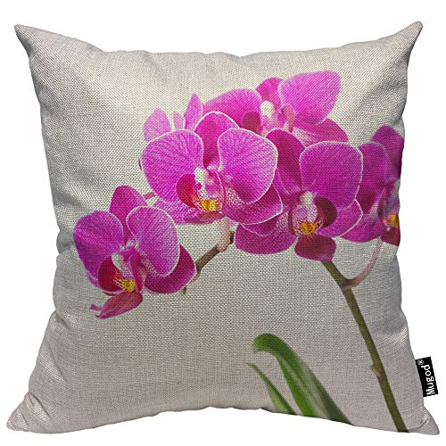 Mugod Dendrobium Throw Pillow Orchid Tropical Flowers Floral Elegant Pink Green White Cotton Linen Square Cushion Cover Standard Pillowcase 18x18 Inch for Home Decorative Bedroom/Living Room/Car ()