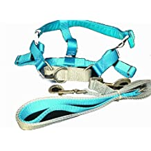 Freedom No Pull Velvet Lined Dog Harness and Leash Training Package Turquoise XL by Wiggles Wags Whiskers