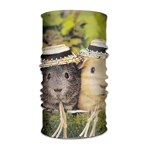 Chenhc Headbands Headwear Hamster Guinea Bandana Sweatband Neck Gaiter Head Wrap Outdoor Mask