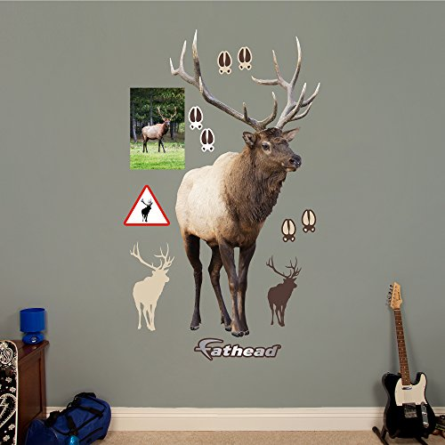 Elk Wall Decal, Large