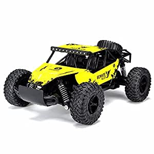 Amazon.com: RC Car – Huajia 1/16 2.4G 4WD Off-Road ...