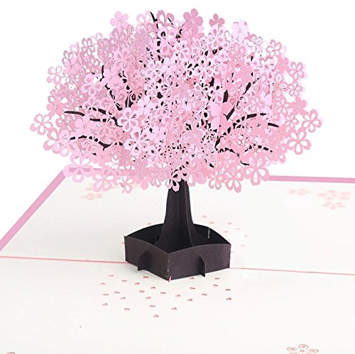 Cherry Pop Up Card, 3D Card, Greeting Card for Birthday,Father's Day, Mother's Day, Valentine's Day Wedding Invitation Anniversary Greeting