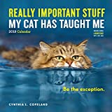 Really Important Stuff My Cat Has Taught Me Wall Calendar 2019 by