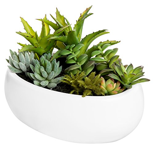 MyGift 7-inch Artificial Succulent Centerpiece Arrangement in White Ceramic Oval Planter ()