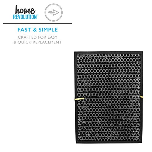 Home Revolution Replacement Carbon Filter, Fits BioGS and BioGP SPA-421A and SPA-582A and Parts BioGS Carbon Filter by Home Revolution (Image #1)