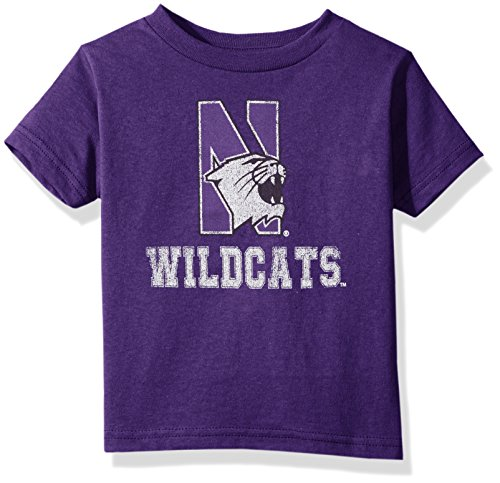 Original Retro Brand NCAA Northwestern Wildcats Youth Boys Tee, Large, Purple
