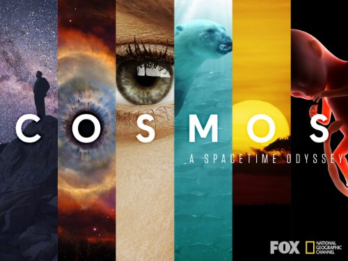 Cosmos: A Space-Time Odyssey (2014) (Television Series)