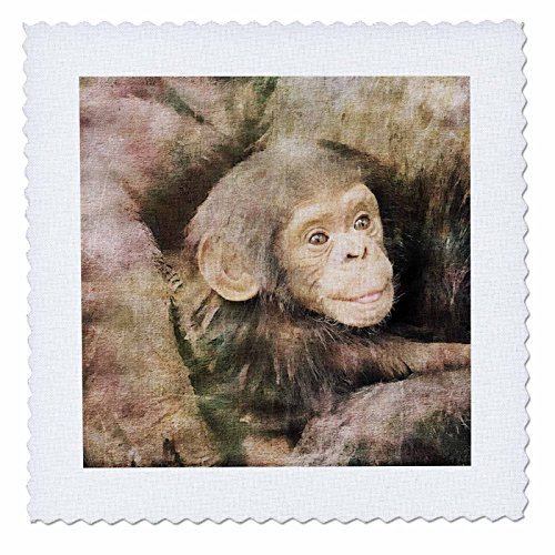 3dRose Andrea Haase Animals Illustration - Chimpanzee Mother With Child Watercolor Illustration - 20x20 inch quilt square (qs_268157_8) by 3dRose