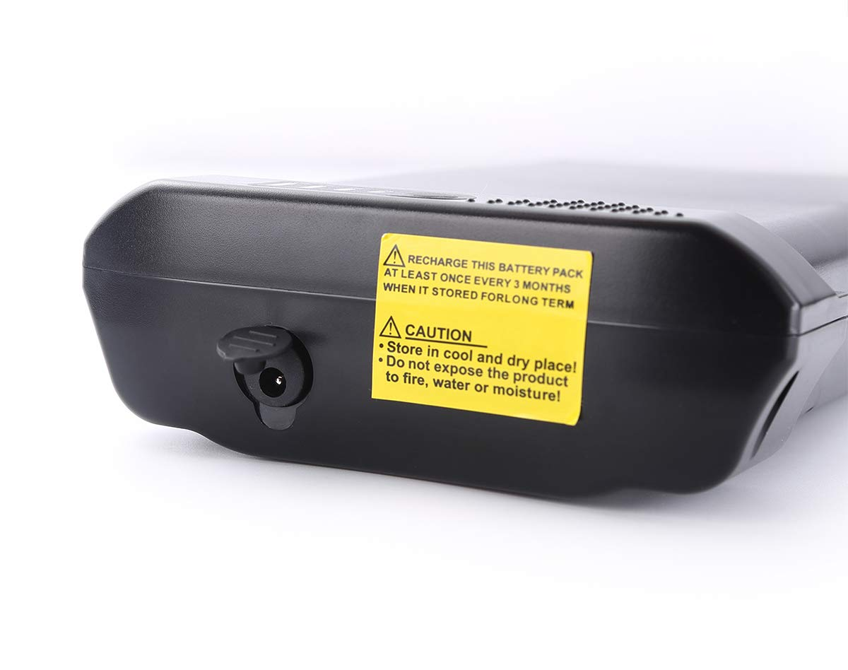 HANERIDE E-Bike Replacement Battery 24V 8.8Ah Original Cells Ansmann Battery with Charger
