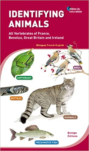 Read Online Identifying animals - All Vertebrates of France, Benelux, Great Britain and Ireland. Bilingual French-English. pdf, epub