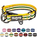 Blueberry Pet 15 Colors 3m Reflective Multi Colored Stripe Adjustable Dog Collar Yellow And Green Large Neck 18 26