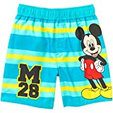 Mickey Mouse Toddler Boy Striped Swim Trunks (5T)