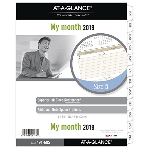 AT-A-GLANCE Day Runner Monthly Planner Refill, January 2019 - December 2019, 8-1/2