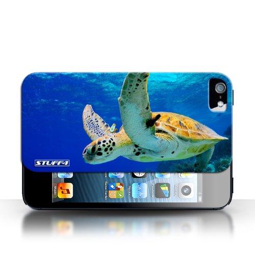 Hülle Case für Apple iPhone 5/5S / Schildkröte Entwurf / Wilde Tiere Collection