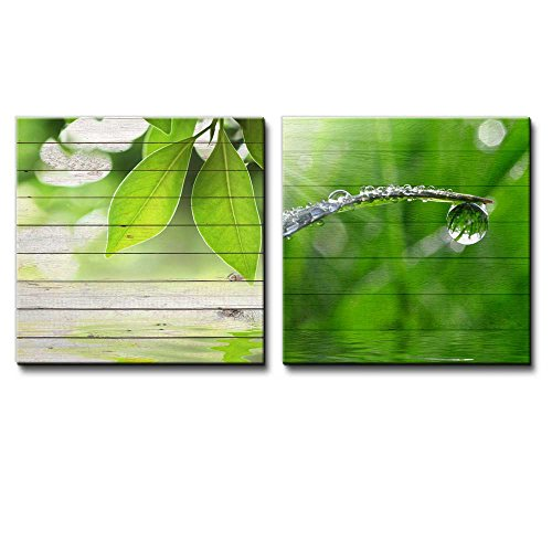 Branch with Leaves at the Top Along with a Leaf Covered with Water Drops Over Wooden Panels