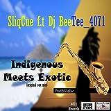 Indigenous Meets Exotic (feat. Dj BeeTee_4071)