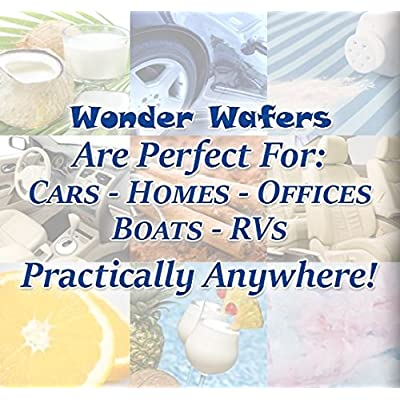 Wonder Wafers Air Fresheners 100ct. Individually Wrapped, New Leather Fragrance: Garden & Outdoor