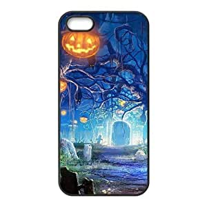 iphone5 5s Black phone case Haunted House Halloween The best gift DVE3548464