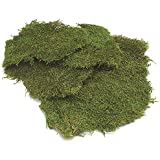 Green Sheet Moss Dried, Natural for Fairy Gardens, Terrariums, or Any Craft or Floral Project (Sheet Moss-Green 6 OZ)