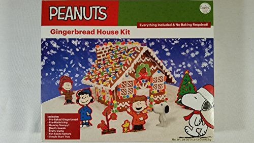 Gingerbread House Icing - 9