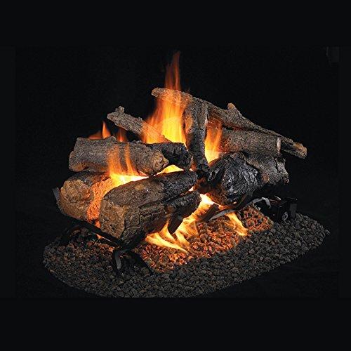 Real Fyre 18-inch Charred American Oak See-Thru Vented Gas Logs Bundled with G45 See-Thru Burner Kit (Natural Gas) (Vented Thru See Natural)
