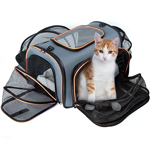 Veckle Expandable Pet Carrier, Airline Approved 4 Sides Expansion Pet Cat Travel Tote Bag Foldable Soft Side Carrier for Cats Dogs and Small Animals