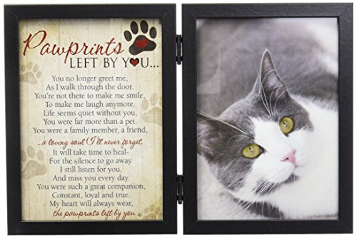Memorial Cat (Pawprints Left By You Memorial 5x7 Frame for Cat with Pet Tag)