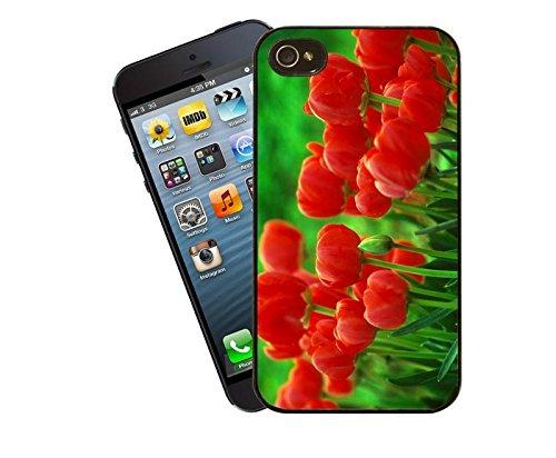 Tulpen-iPhone-Tasche - passen diese Abdeckung Apple Modell 4 und 4 s - von Eclipse-Geschenk-Ideen