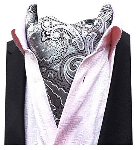 ilver Paisley Woven Silk Cravat Necktie Scarf Ascot Tie ()