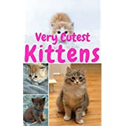 Cutest Kittens: 1500+ Picture Cutest Kittens Cats Photobook for Kids Lv.1 (BABY KITTENS Cats Dogs Cute Fluffy Animals For Children ,cat photobook ,cat ... bybee,Cat School,Cutest Kittens,Pet An)