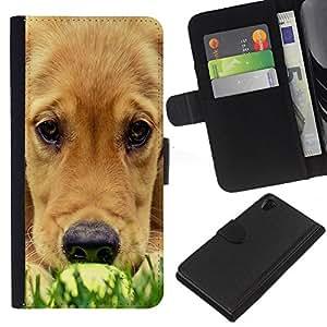 Labrador Golden Retriever Muzzle Grass Dog - la tarjeta de Crédito Slots PU Funda de cuero Monedero caso cubierta de piel Sony Xperia Z2 D6502