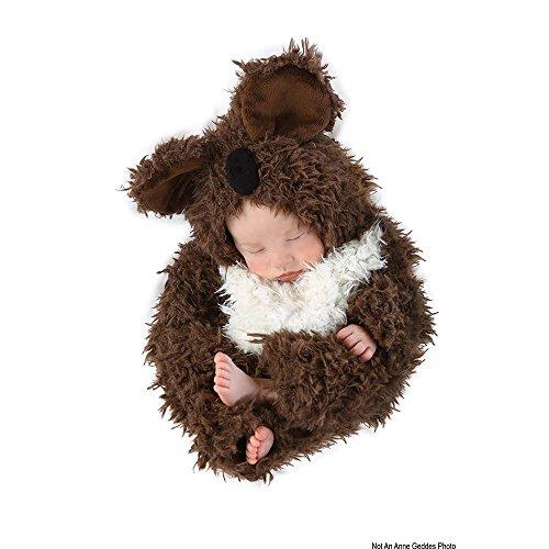 Princess Paradise Baby Anne Geddes Koala, Brown/White 0-3 Months ()