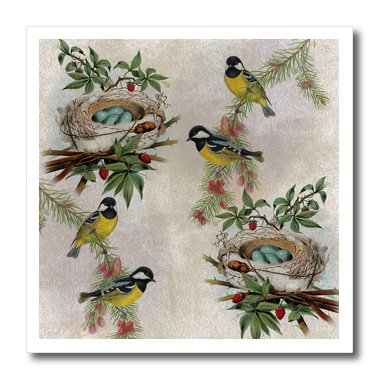 3dRose ht_178879_1 Birds and Nests Vintage-Iron on Heat Transfer Paper for White Material, 8 by 8-Inch ()