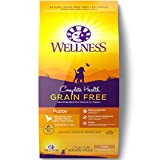 Wellness Complete Health Natural Grain Free Dry Puppy Food, Chicken & Salmon, 24-Pound Bag For Sale