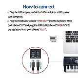 LiDiVi MIDI to USB IN-OUT Cable MIDI