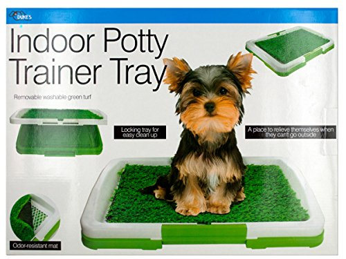 Kole Imports Indoor Potty Trainer Tray