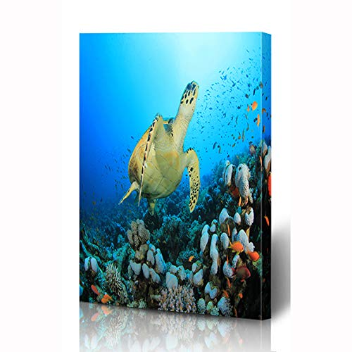 Ahawoso Canvas Prints Wall Art 12x16 Inches Fish Tropical Hawksbill Sea Turtle Eretmochelys Imbricata Coral Nature Blue Design Wooden Frame Printing Home Living Room Office Bedroom ()
